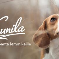 kaunila_lemmikeille_flyer_etusivu